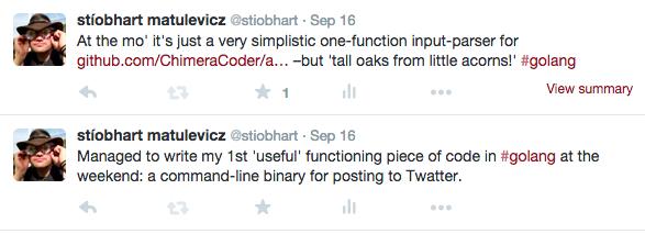 Twitter with my custom uBlock Origin rule