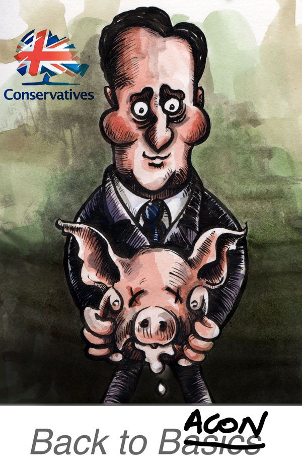 political cartoons 2018 2019 005
